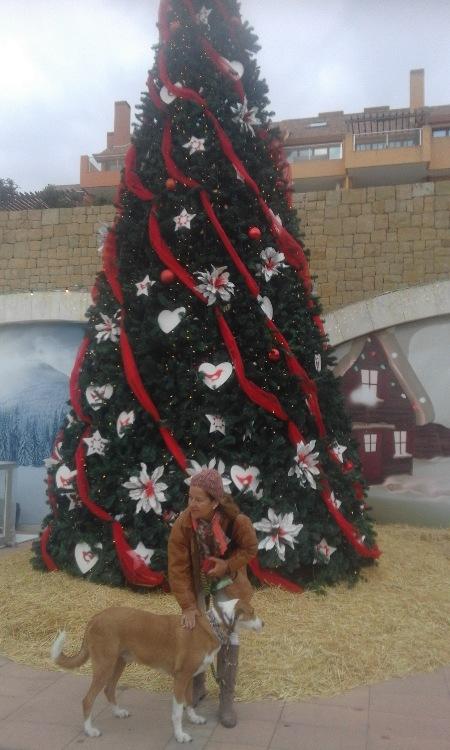 Navidad Sotogrande